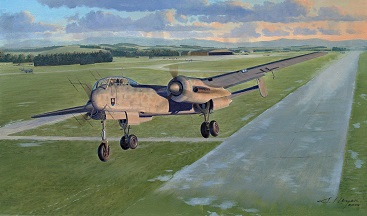 He219 painting